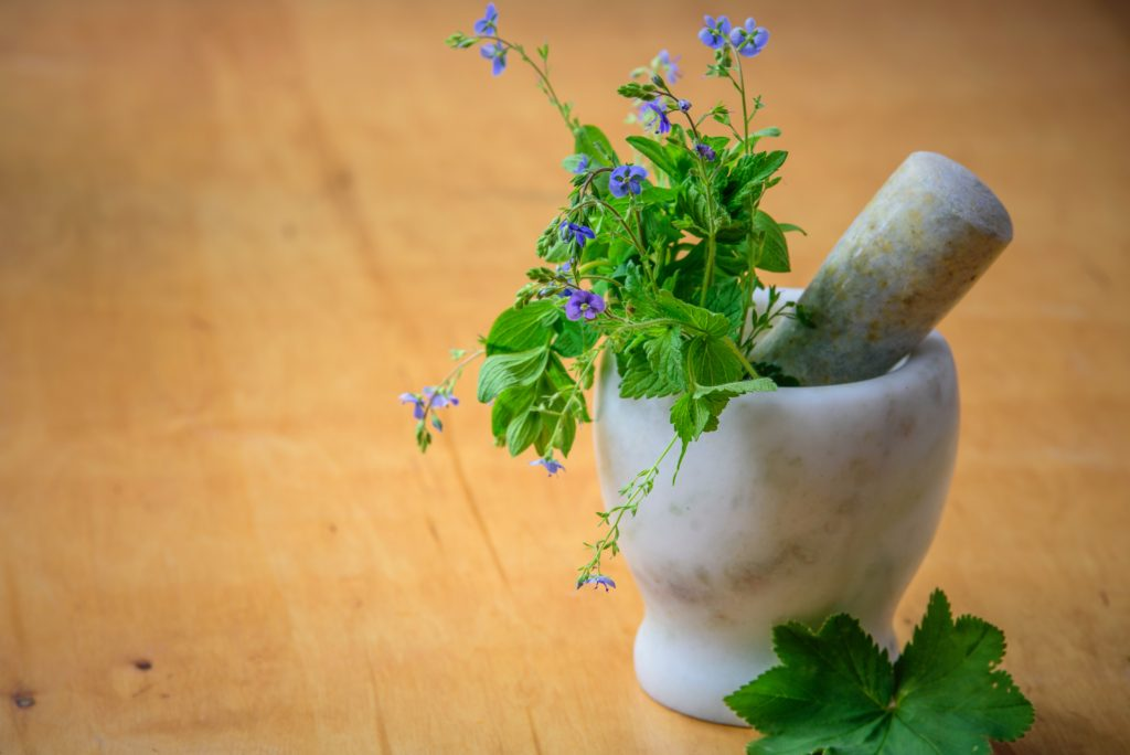 herbs and natural medicine sit in a mortar and pestle